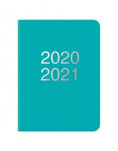 Dazzle A6 Day to Page Diary with Appointments 2020-2021 Turquoise