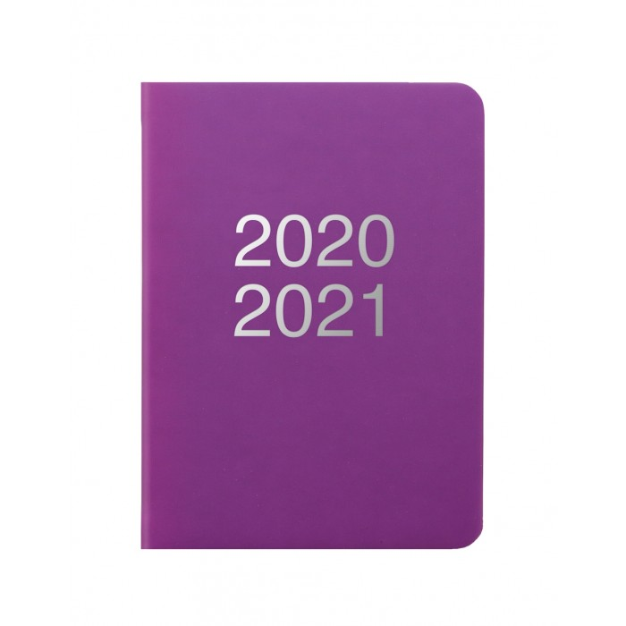 Dazzle A6 Day to Page Diary with Appointments 2020-2021