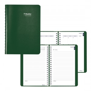 Academic Daily Planner Classic 2019-2020 - English