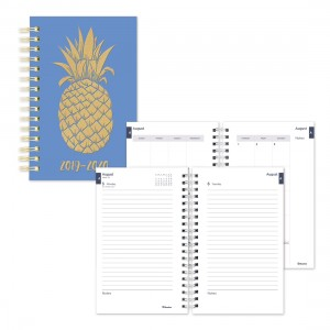 Academic Daily Planner Pineapple 2019-2020