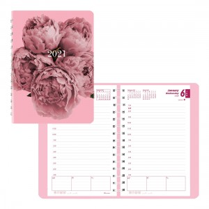 Pink Ribbon Daily Planner 2021 Pink