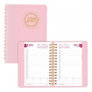 2019 Pink Ribbon Daily Planner