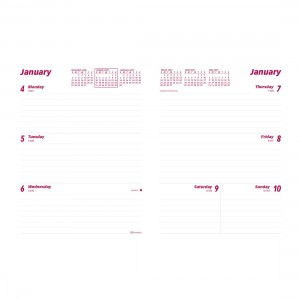 Weekly Planner 2021 Refill for CB852