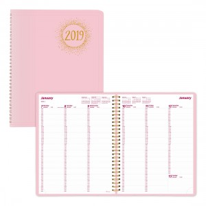 2019 Essential/Pink Ribbon Weekly Appointment Book