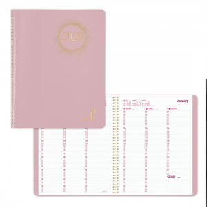 Essential/Pink Ribbon Weekly Appointment Book 2020